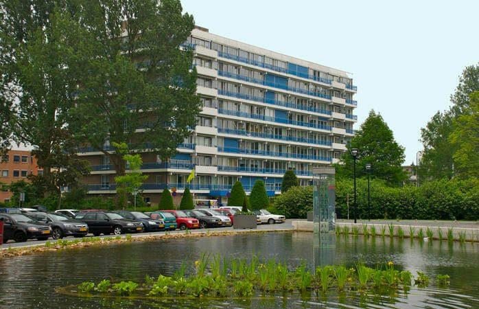 Tuinonderhoud Woonzorg Dordrecht