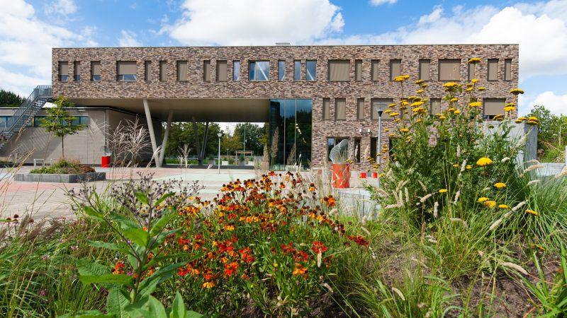 School in Ridderkerk maakt groen schoolplein