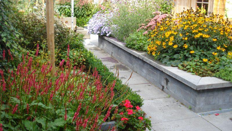 Verhoogde plantenbak in een tuin in Zuidland