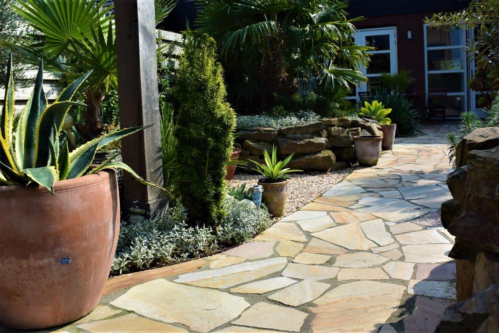 tuin met palmen