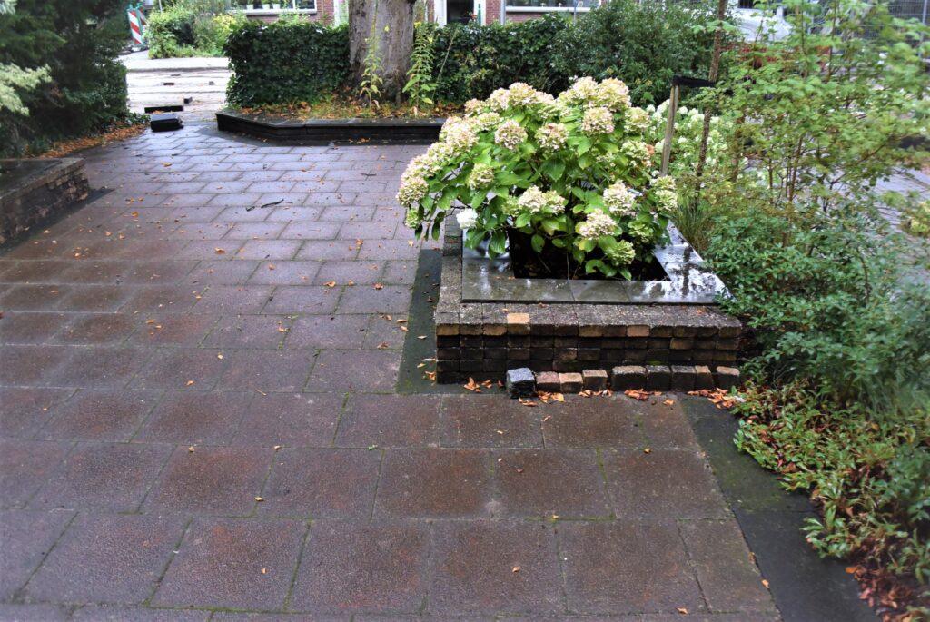 Dordrecht particuliere tuin - oude situatie