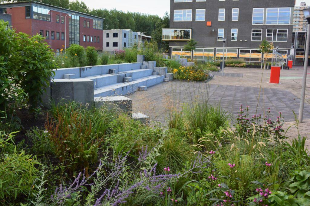 Farelcollege Ridderkerk - nieuwe situatie schoolplein
