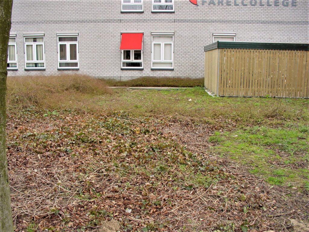 Farelcollege Ridderkerk - oude situatie voortuin