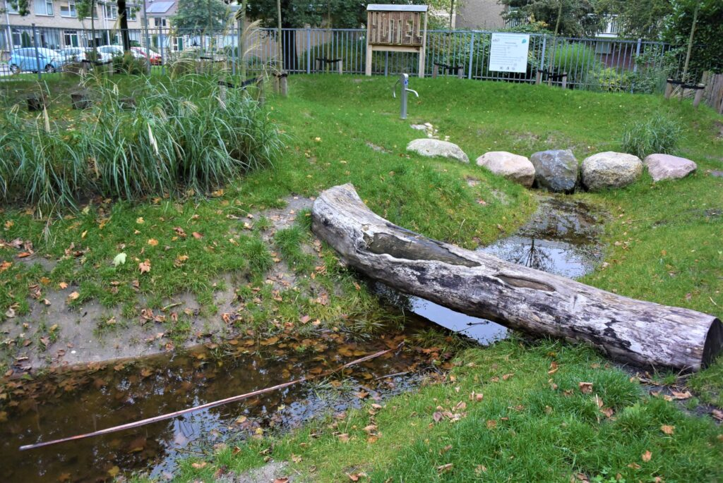 groen schoolplein met boomstambrug en zwerfkeien